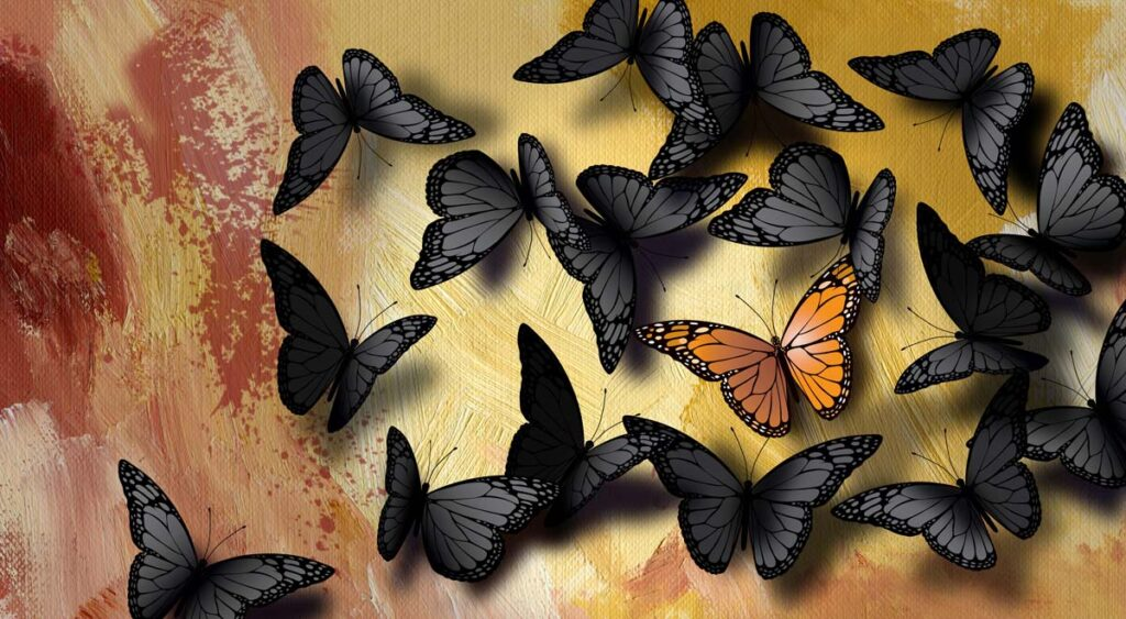 - The Butterfly Connection - What do we Know?